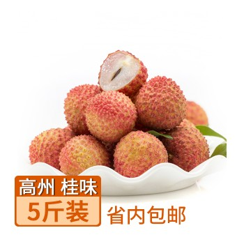 【特产】高州 荔枝皇后 桂味5斤 (只送广东省内地址)