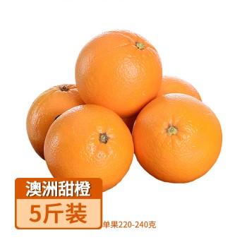 【亚博下载地址】澳洲甜橙5斤装(单果220-240克)80587