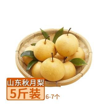 【亚博下载地址】山东 秋月梨 5斤 80461