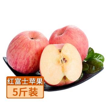 【亚博下载地址】陕西 十记果园 红富士苹果5斤装果径70-80mm 80648