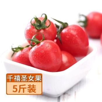 【亚博下载地址】山东莘县 千禧圣女果 小番茄(水联)