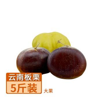 【亚博下载地址】云南 当季新鲜板栗 大果 5斤装  80433