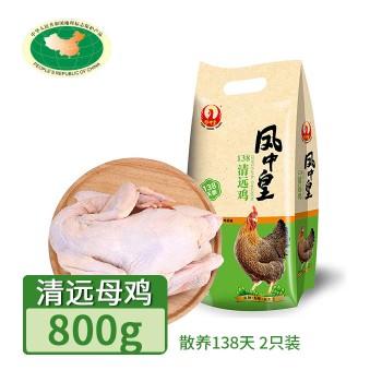 【亚博下载地址】清远 天农凤中皇138天 清远母鸡800g(散养138天)2只装 冷冻鸡肉整鸡肉类地标产品