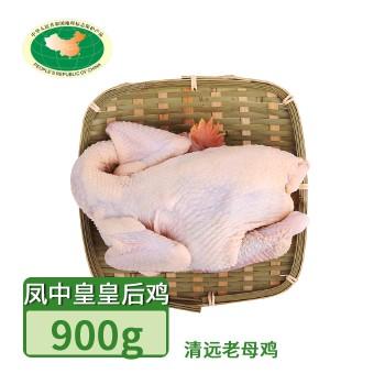 【亚博下载地址】清远 天农 凤中皇皇后鸡清远 老母鸡 1只900g 80420地标产品