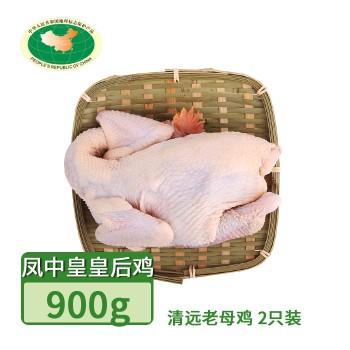【亚博下载地址】清远 天农 凤中皇皇后鸡清远 老母鸡 2只900g 80420地标产品