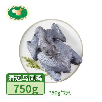 【亚博下载地址】清远 天农 凤中皇乌凤鸡(竹丝鸡)2只*750g 80420地标产品