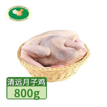 【亚博下载地址】清远 天农凤中皇月子鸡 1只800g 80420地标产品