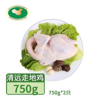 【亚博下载地址】清远 天农 飞来峡土鸡走地鸡2只*750g 80420地标产品