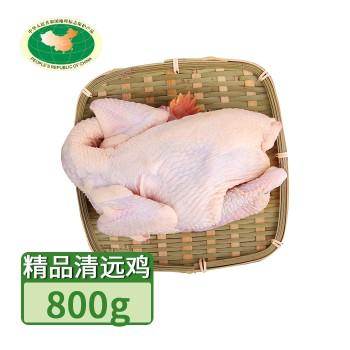 【亚博下载地址】清远 天农 精品清远鸡 1只800g 80649地标产品