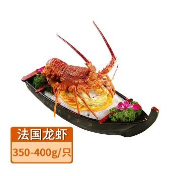 【亚博下载地址】真然星进口 法国圣保罗岩龙 龙虾350-400g 80546 海鲜刺身