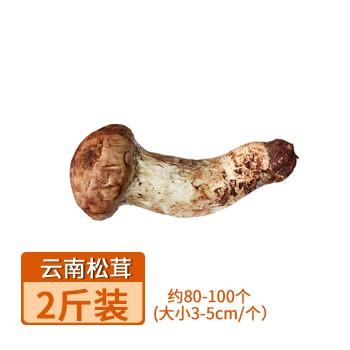 【亚博下载地址】  云南 香格里拉新鲜野生松茸菌  3-5cm  2斤装约72个  80433  山珍